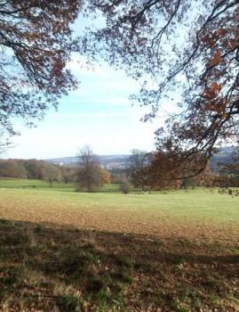Meadows below Bingley St Ives Estate