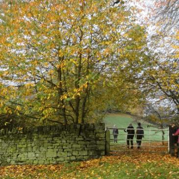 Autumn Walks in Bingley and Surroundings