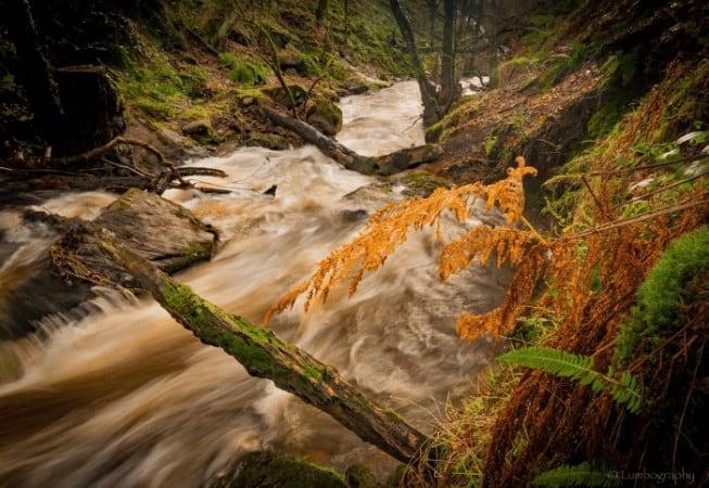Fast flowing of Loadpit Beck in Shipley Glen