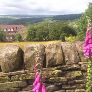 August Sunday Walk – Around Eldwick & Gilstead [09/08/2015]
