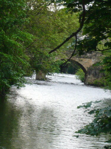 View of Ireland Bridge from River Aire banks in Bingley