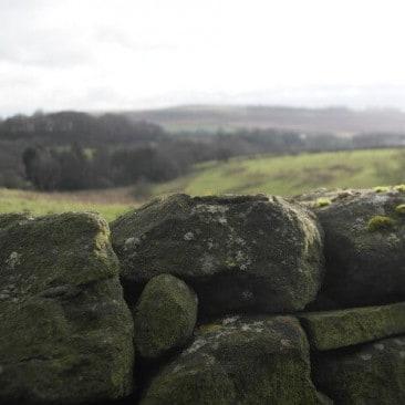 Baildon Moor view behind drystone wall