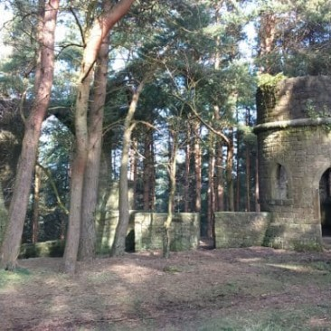 Saint David's Folly in Ruin Bank Wood