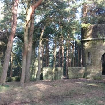 Saint David's Folly in Ruin Bank Wood