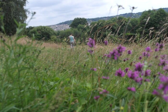Meadows near Shipley Glen