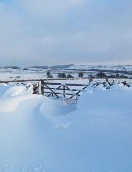 Gate in snow near Eldwick
