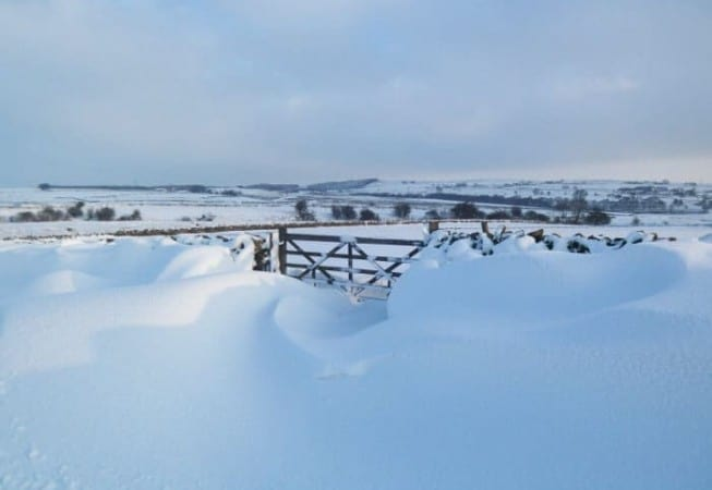 Snow covered field and gate above Eldwick