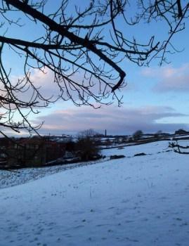 Snow in field near Edwick