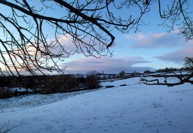 View of a field behind Prince of Wales Park covered in snow