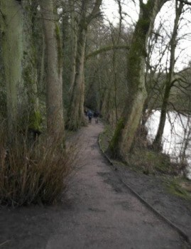 Riverside Footpath in Bingley along River Aire