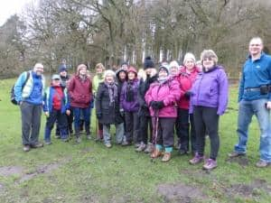 Bingley WaW - February 2017 - Sunday walk