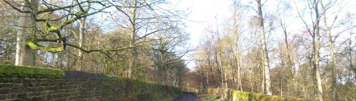 Altar Lane in Bingley St Ives Estate