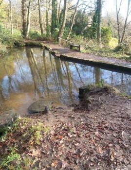 Baxter's Pond in St Ives Estate, Harden
