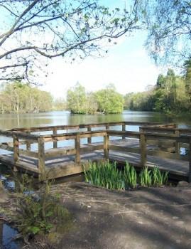 Coppice Pond in Bingley St Ives