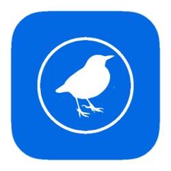 Bird Hide Icon