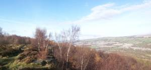 View of Airedale Valley above Druid's Altar