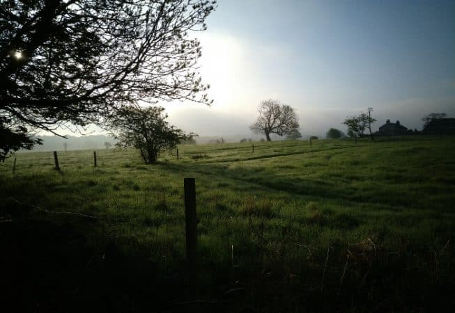 Meadows covered in dew near Harden in West Yorkshire