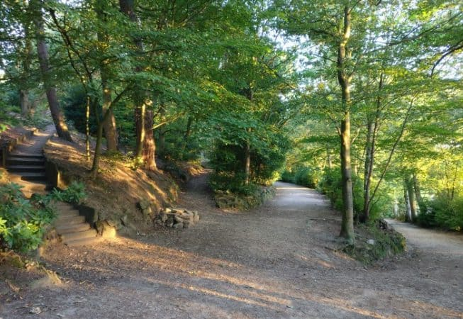 Four different paths at the Prince of Waled Park