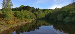 Sunny Dale Reservoir in East-Morton