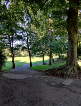 Paths in Myrtle Park, Bingley