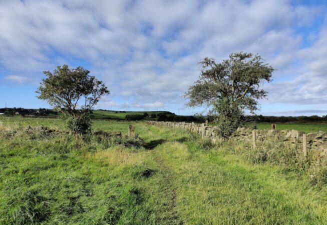Millenium Way Path near Wilsden