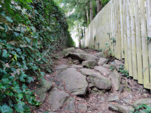 Rough Path in Cottingley