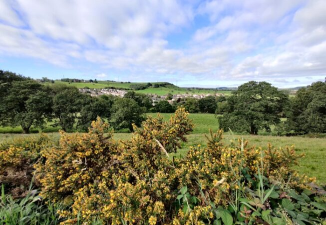 View of Nab Lane , a hillock near Wilsden